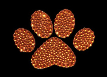 View Rhinestone Sticker Paw Orange Image 1